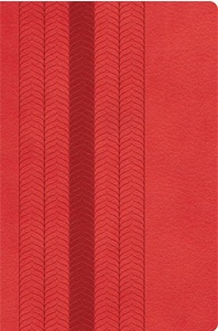 The NKJV Study Bible (Thumb Indexed, Coral Sheen Leathersoft) BOXED