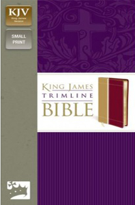 KJV, Trimline Bible, Imitation Leather, Tan/Red
