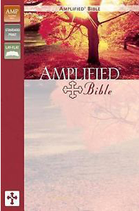 Details about The Amplified Bible, Bonded leather, Navy
