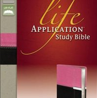 Personal Size Life Application Study Bible (NIV, Orchid/Chocolate Italian Duo-Tone)