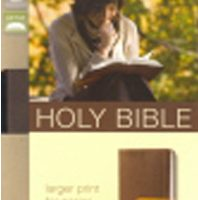 NIV Large Print Holy Bible (Chocolate / Amber, Italian Duo-Tone)