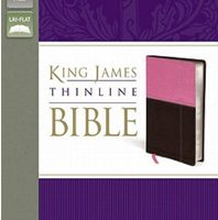 King James Version Thinline Bible (KJV, Orchid/Chocolate Italian Duo-Tone, Silver-Gilded Pages)