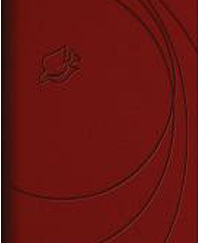 New Spirit-Filled Life Bible (NLT/Study, 4553 Brick Red Leathersoft, Silver Gilded-Pages) IMM LEATHER BY Jack Hayford