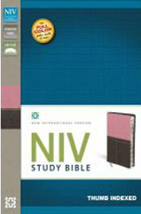 NIV Study Bible (Berry Creme/Chocolate Italian Duo-Tone, Thumb Indexed)